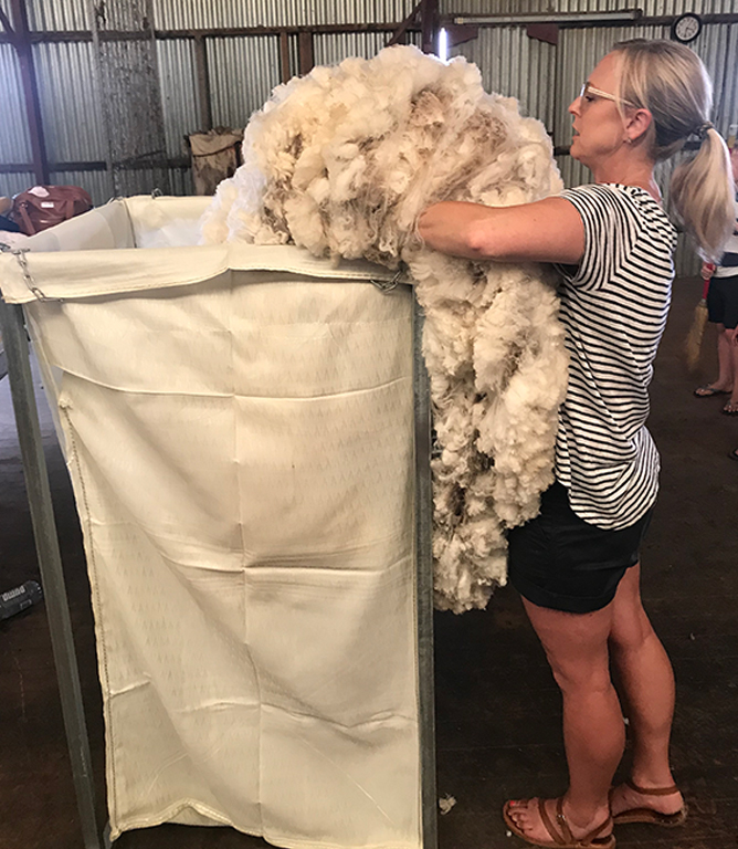 Bullmax Wool Frame